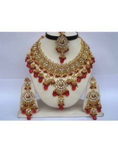 Garam Masala Epices Indienne 100grs Raja